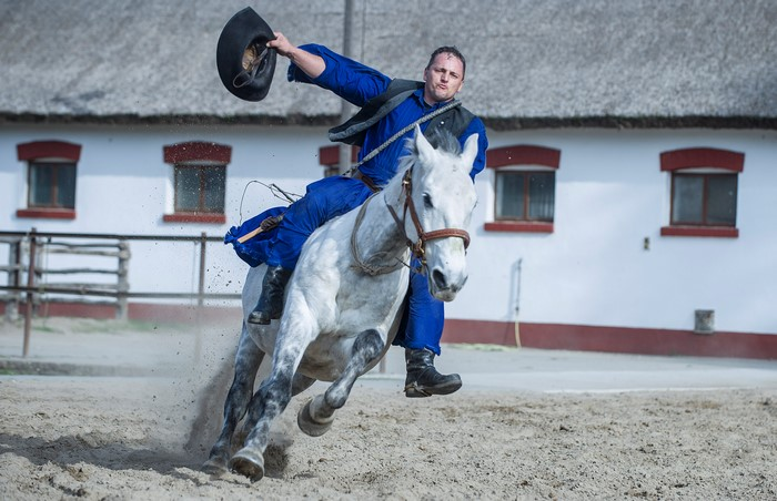 The cowboys of Hungary – horseshow and 'puszta' program